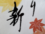 Japan Sencha Momiji